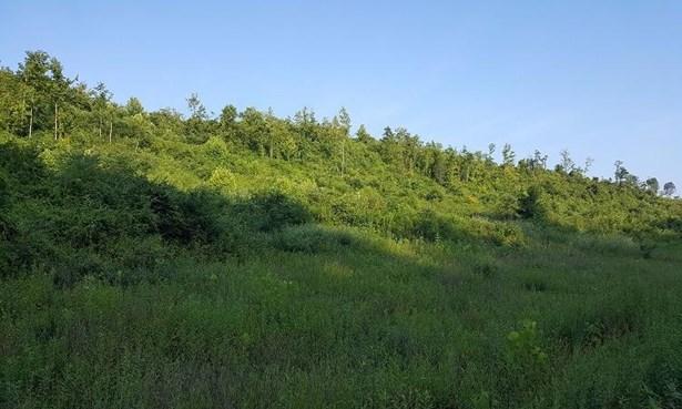 Acreage - Bidwell, OH (photo 2)