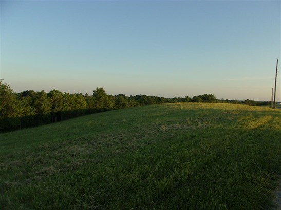 Acreage - Brooksville, KY (photo 4)
