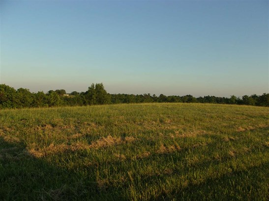 Acreage - Brooksville, KY (photo 5)