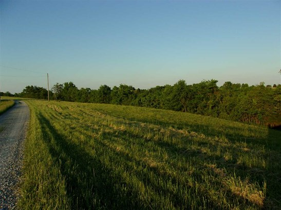 Acreage - Brooksville, KY (photo 1)