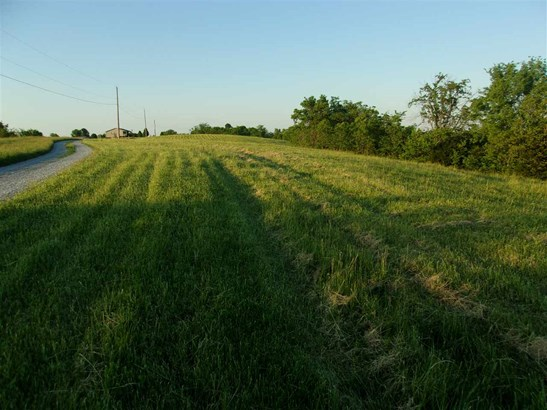 Acreage - Brooksville, KY (photo 2)