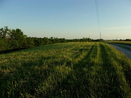 Acreage - Brooksville, KY (photo 3)