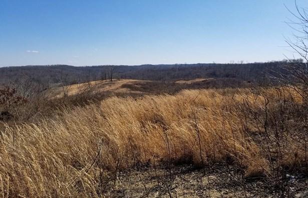 Acreage - Bloom Twp, OH (photo 1)
