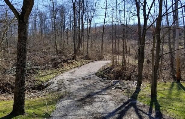 Acreage - Bloom Twp, OH (photo 2)