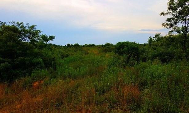 Acreage - Bloom Twp, OH (photo 3)