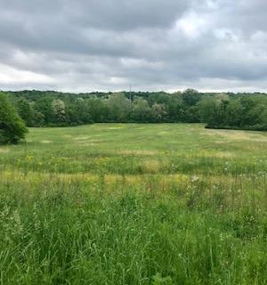 Farm, Colonial - Gratis Twp, OH (photo 1)
