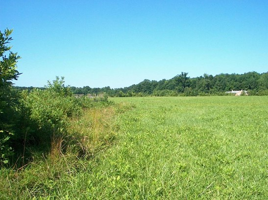Single Family Lot - Tate Twp, OH (photo 4)