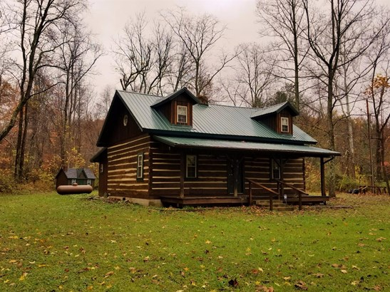 Single Family Residence, Cabin/Rustic - Meigs Twp, OH (photo 1)