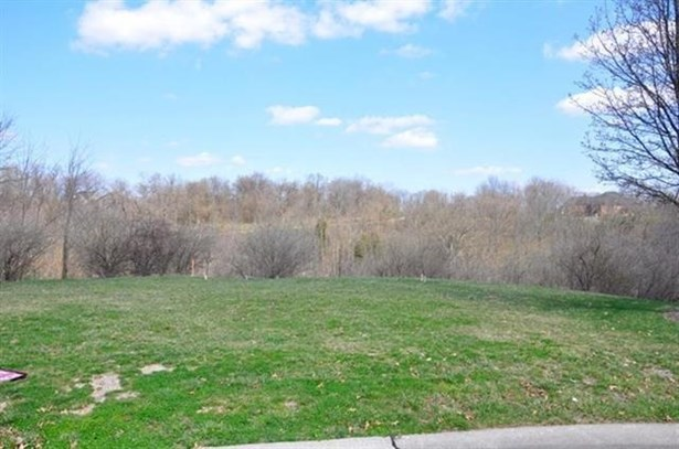 Single Family Lot - Villa Hills, KY (photo 5)