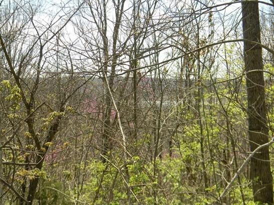 Acreage - Washington Twp, OH (photo 2)