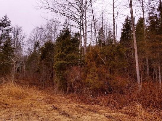 Acreage - Meigs Twp, OH (photo 1)