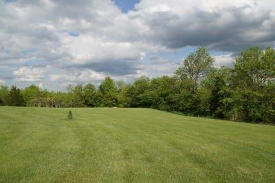 Ranch, Single Family,Single Family Detached - Williamstown, KY (photo 3)