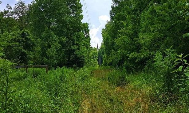 Acreage - Madison Twp, OH (photo 2)