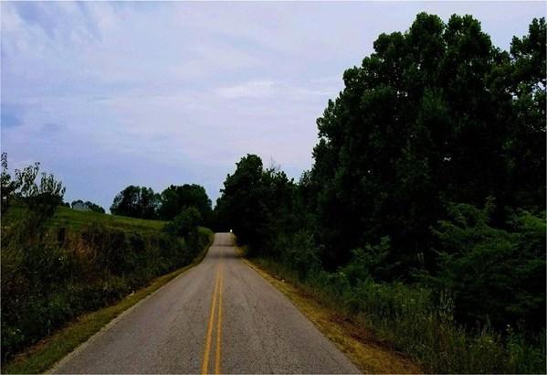 Acreage - Sprigg Twp, OH (photo 5)