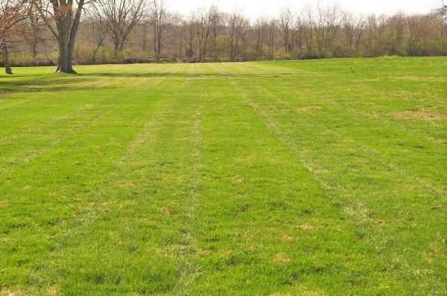 Single Family Lot - Seven Mile, OH (photo 2)