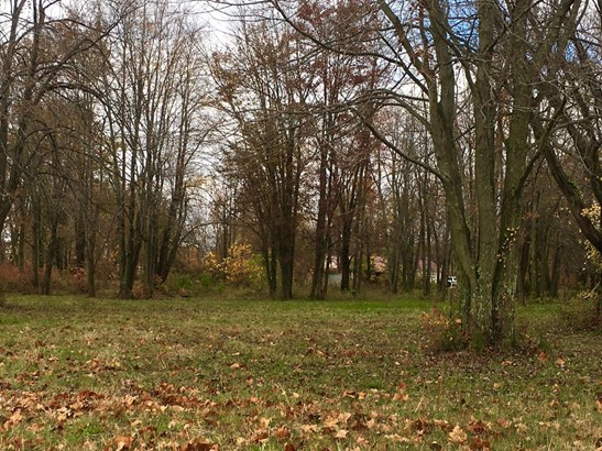 Single Family Lot - Hamersville, OH (photo 2)