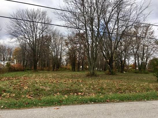 Single Family Lot - Hamersville, OH (photo 4)