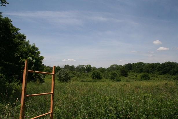 Acreage - Liberty Twp, OH (photo 4)