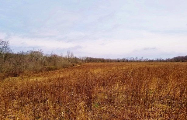 Acreage - Paint Twp, OH (photo 3)