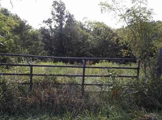 Acreage - Owenton, KY (photo 3)