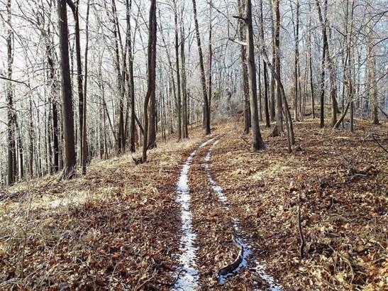 Acreage - Brushcreek Twp, OH (photo 1)