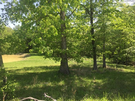 Single Family Lot - Tiffin Twp, OH (photo 2)
