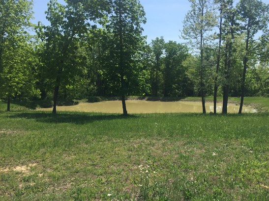 Single Family Lot - Tiffin Twp, OH (photo 3)