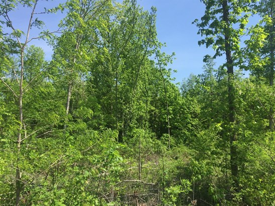 Single Family Lot - Tiffin Twp, OH (photo 5)
