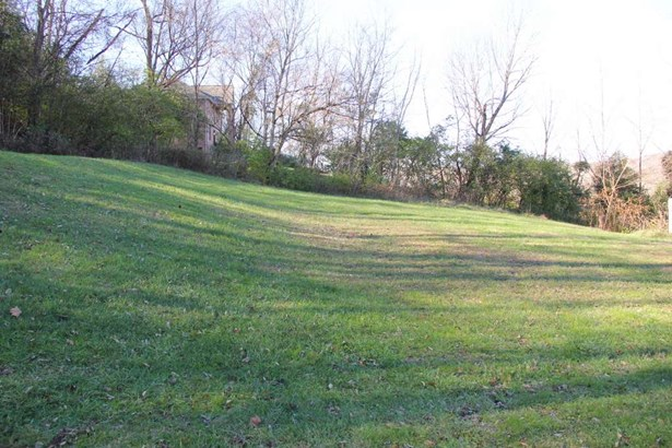Ranch, Single Family,Single Family Detached - Melbourne, KY (photo 4)