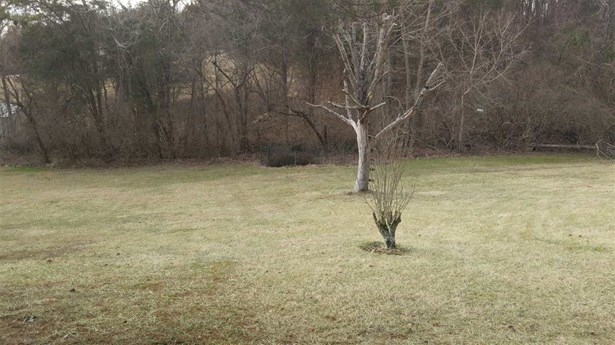 Single Family,Lease/Rental Detached, Traditional - Cold Spring, KY (photo 3)