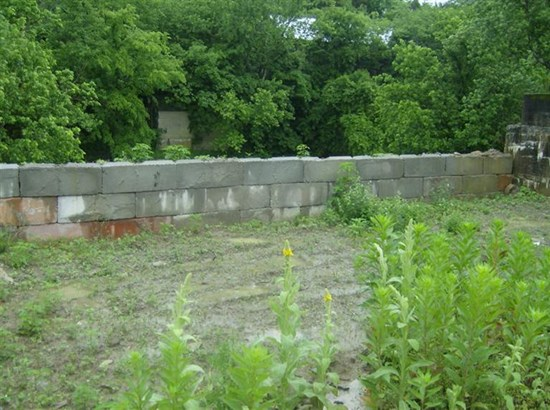Commercial Lot - Brooksville, KY (photo 2)