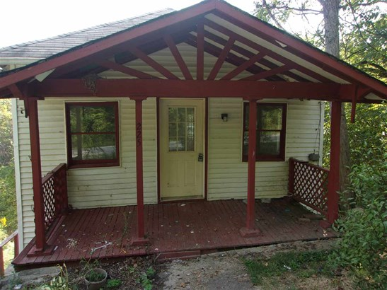 Single Family,Single Family Detached, Traditional - Brooksville, KY (photo 1)