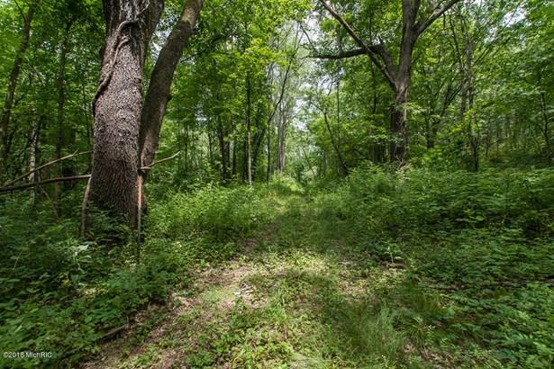 Acreage - Battle Creek, MI (photo 3)