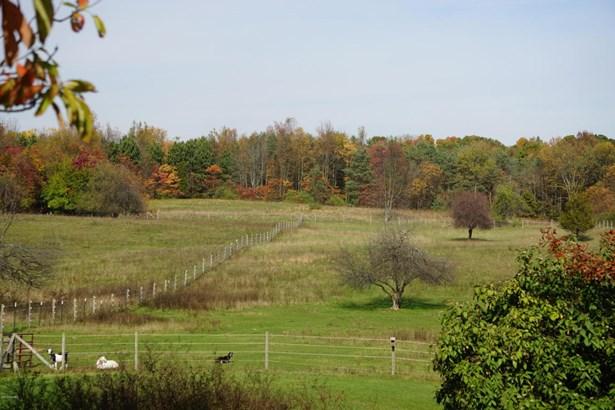 Single Family Residence, Ranch - Schoolcraft, MI (photo 2)