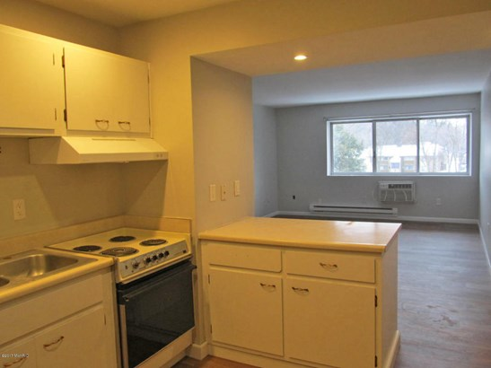 Condominium, Ranch - Kalamazoo, MI (photo 3)