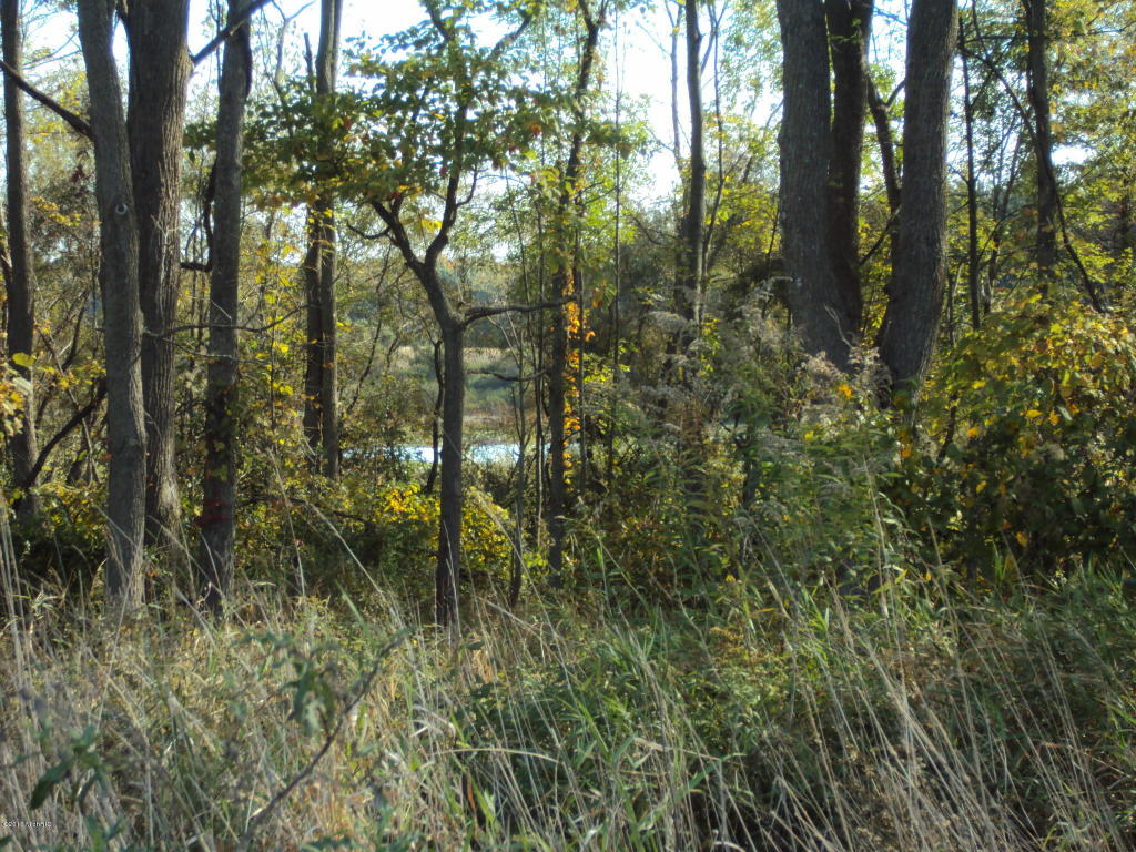 Acreage - Paw Paw, MI (photo 2)