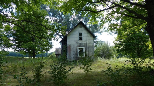 Acreage - Allegan, MI (photo 5)