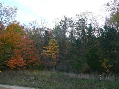 Acreage - Lawrence, MI (photo 2)