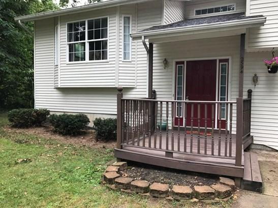Single Family Residence, Bi-Level - Wayland, MI (photo 3)