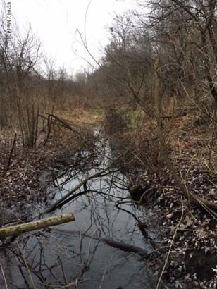 Acreage - Battle Creek, MI (photo 4)