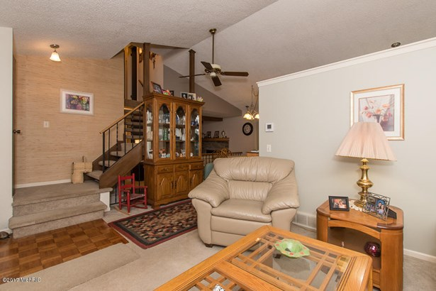 Single Family Residence, Quad Level - Plainwell, MI (photo 4)