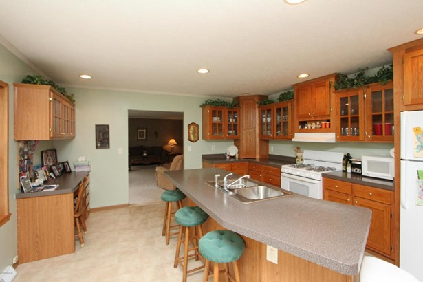 Single Family Residence, Ranch - Otsego, MI (photo 5)