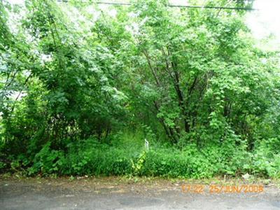 Lot - Battle Creek, MI (photo 1)