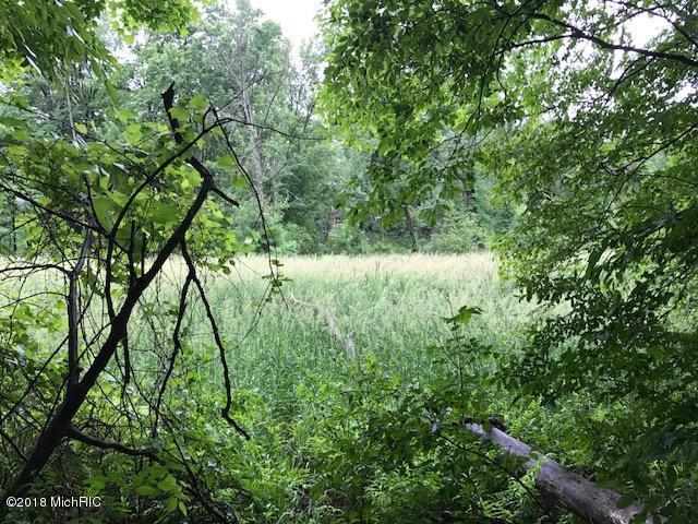 Acreage - Greenville, MI (photo 2)