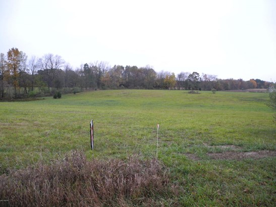 Acreage - Richland, MI (photo 1)