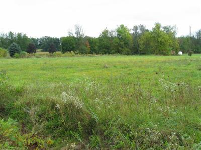 Commercial Land - Plainwell, MI (photo 1)