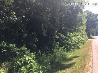 Acreage - Battle Creek, MI (photo 2)