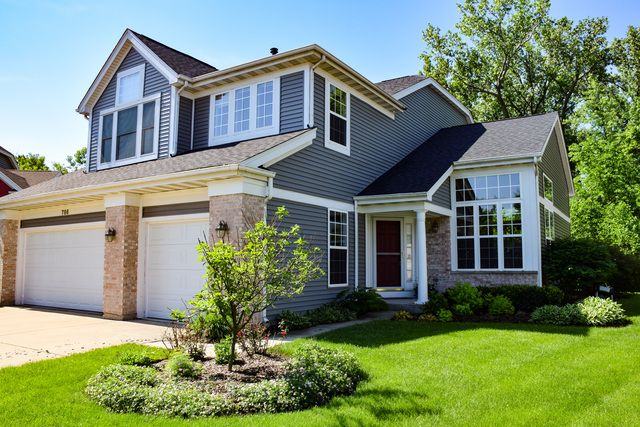 Contemporary, Detached Single - Itasca, IL (photo 1)