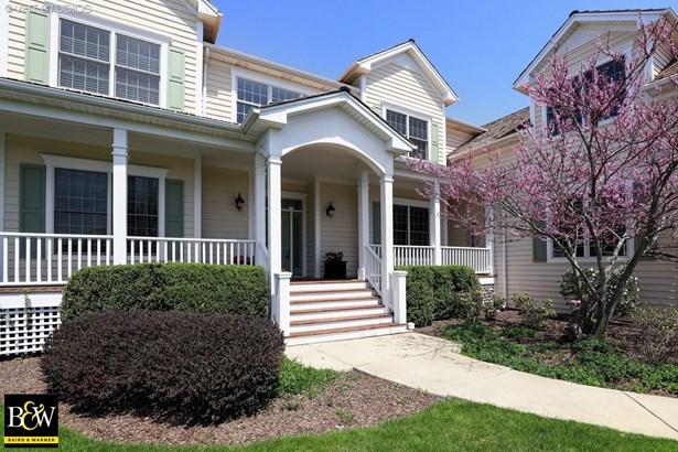 Traditional, Detached Single - Green Oaks, IL (photo 2)