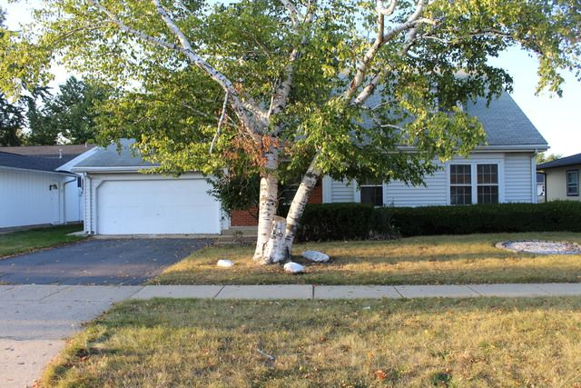 Cape Cod, Detached Single - Elk Grove Village, IL (photo 1)